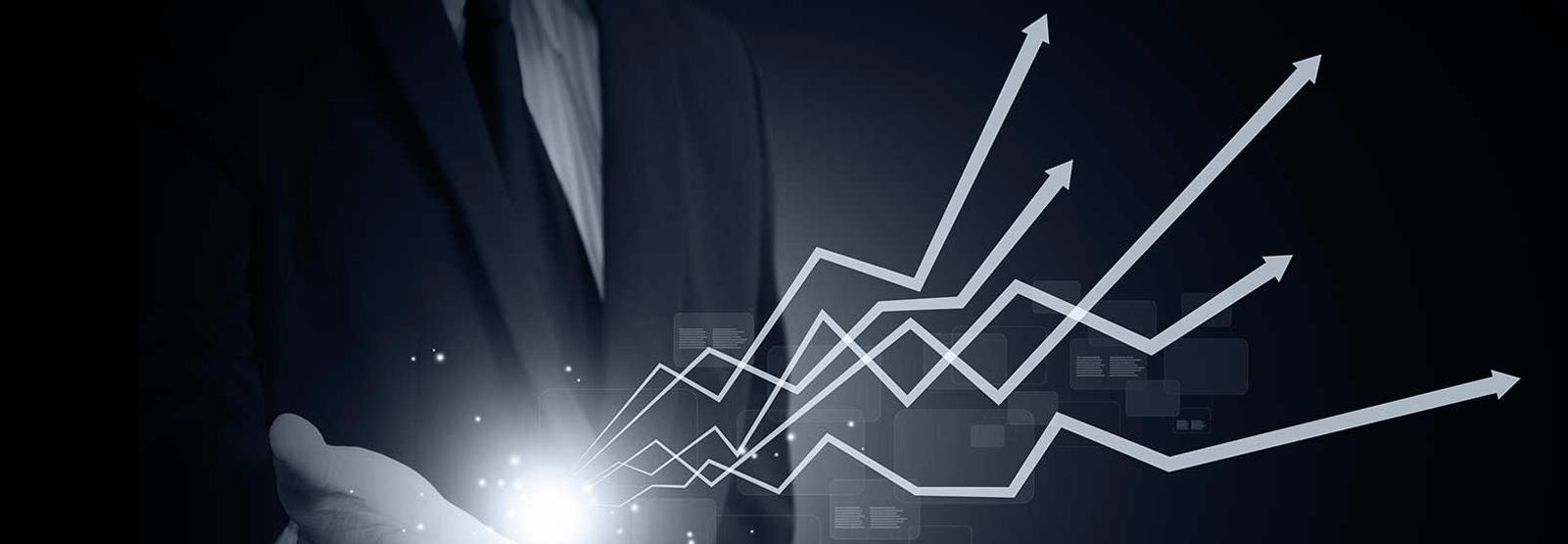 ICEBERG - Business growth
